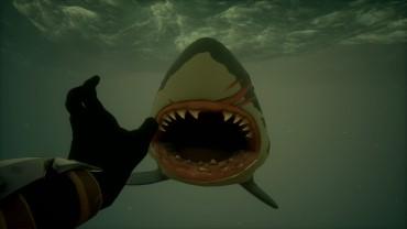 海里搏杀鲨鱼